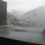 3月9日版 雪情報