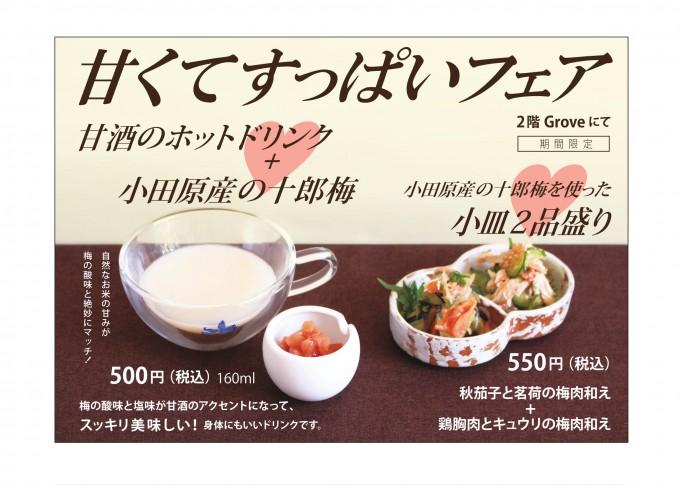 170924-pop-A4-yoko-1